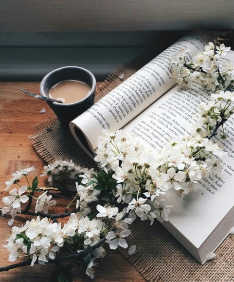 flower and coffee
